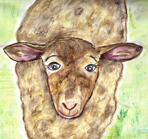 sheep edited