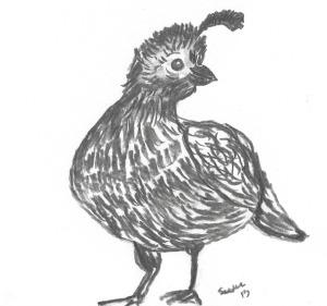 Charcoal bird