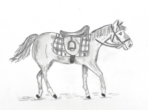 LAC Set 3 Horse Drawing