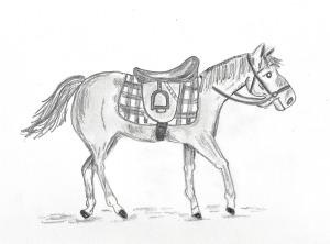 LAC Set 3 Horse Drawing