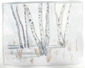 Winter watercolors birch trees