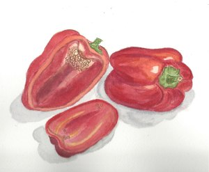 Winter watercolors peppers