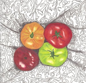 heirloom gardens- tomatos
