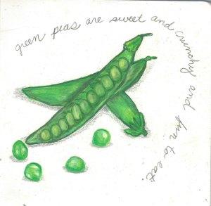 Llama, bee, peas sketchbook-3